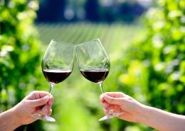 Umjerena konzumacija alkohola